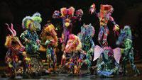 a Cirque du Soleil performance