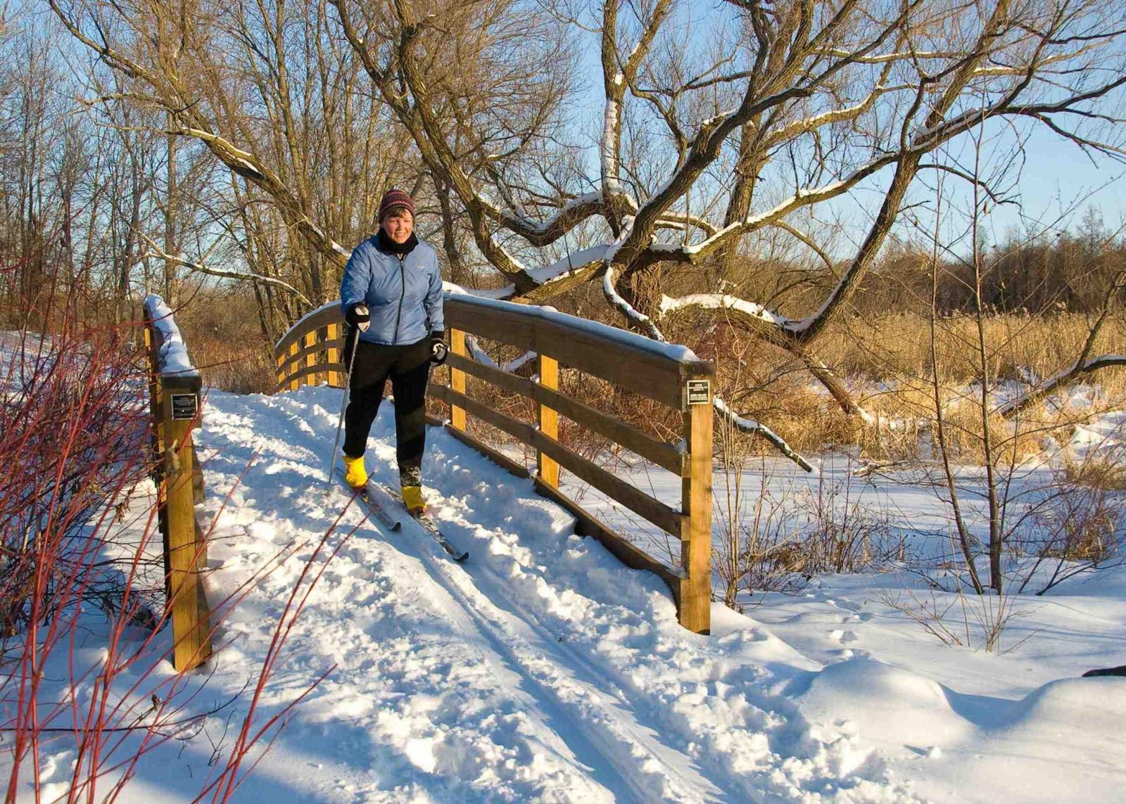 Skiing at the Minnesota Landscape Arboretum