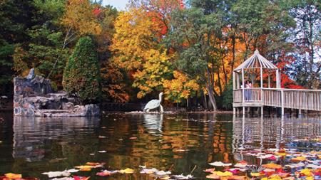 Irvine Pond
