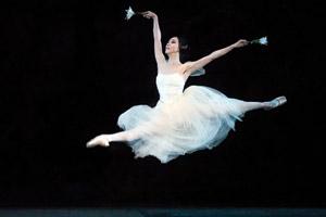 Northrop at the University of Minnesota, American Ballet Theatre