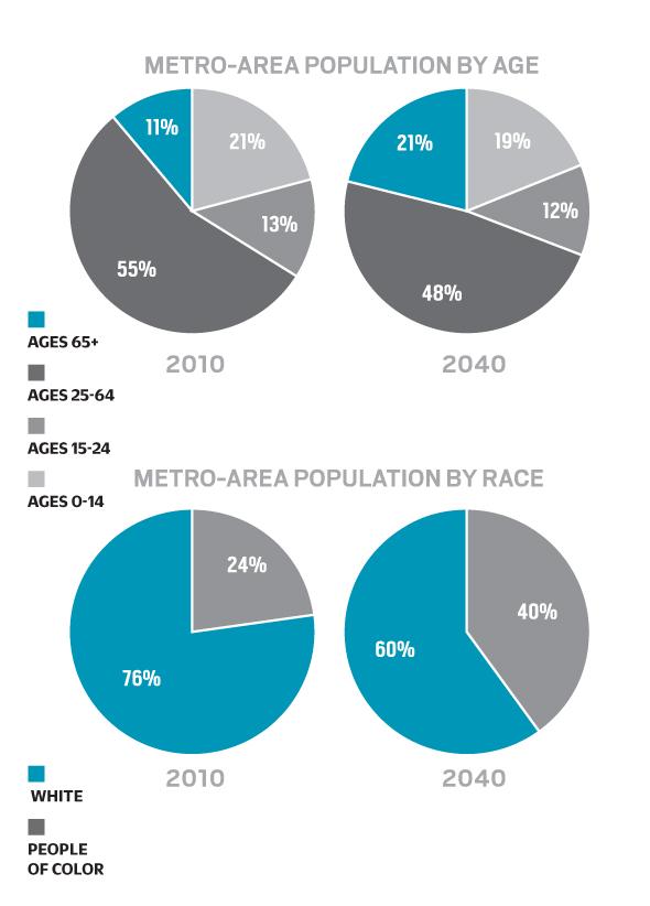 Twin Cities Diversity Population