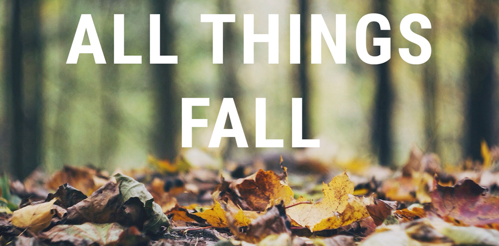 Minnesota Monthly All Things Fall Banner