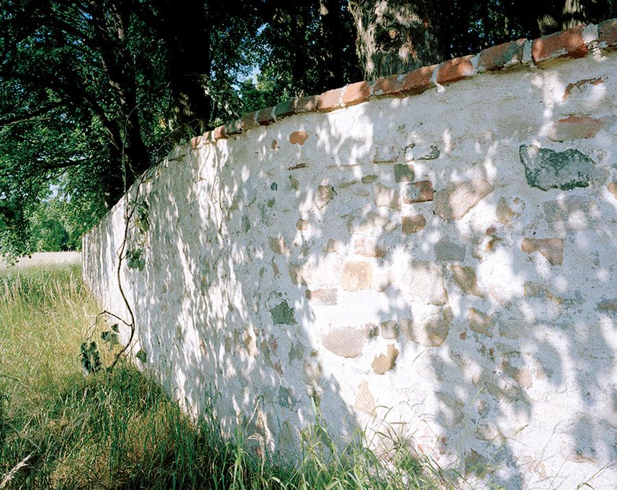 Weisman, Jewish Cemetery, Still . . . Life