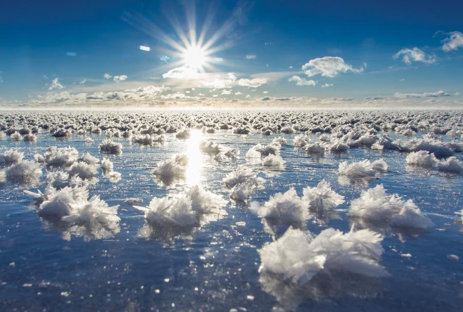 frost flowers, Minnesota, beautiful winter photos, minnesota scenery, Winter Phenomena, Winter wonder