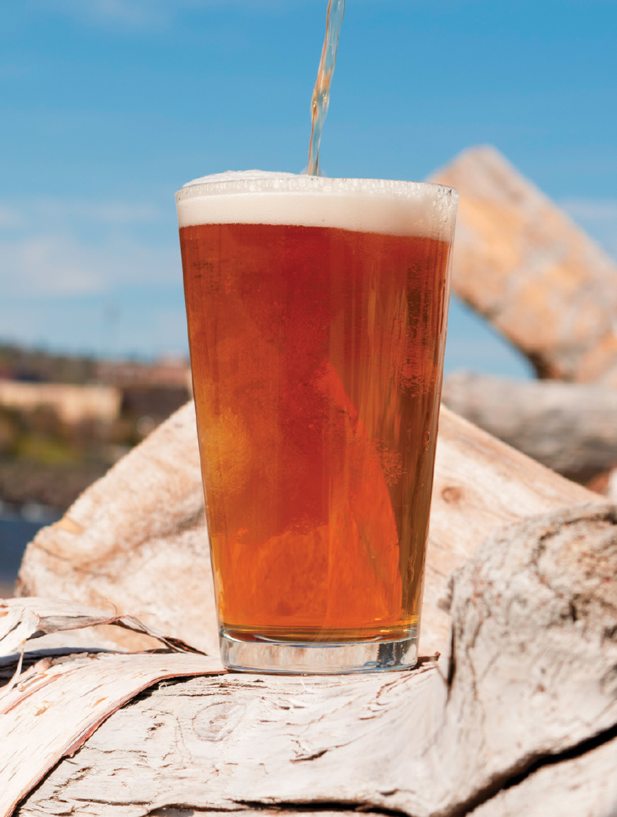 A glass of Fitger's Brewhouse's Superior Trail IPA sitting on a rock.