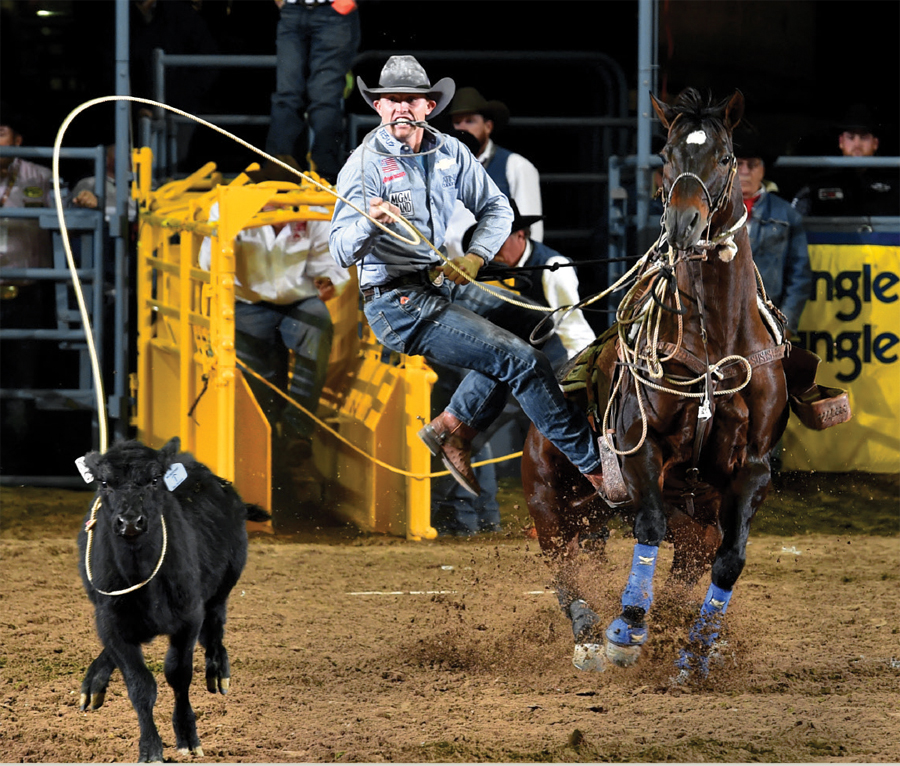 A cowboy roping a calf at the Park Rapids Rodeo and Bull Ride.
