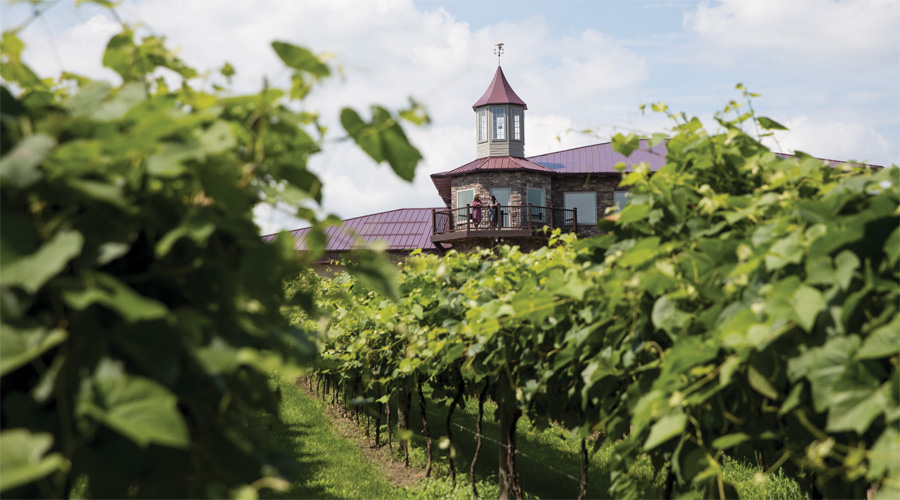 A picture of the vineyard and tasting room at Winehaven Winery.