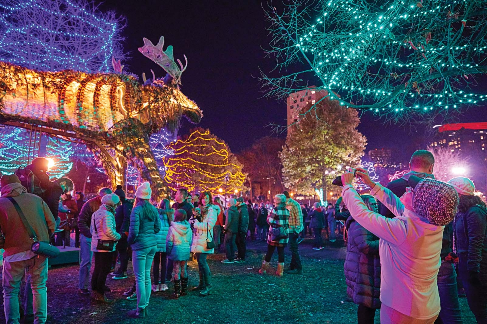 The Twin Cities Holidazzle celebration.