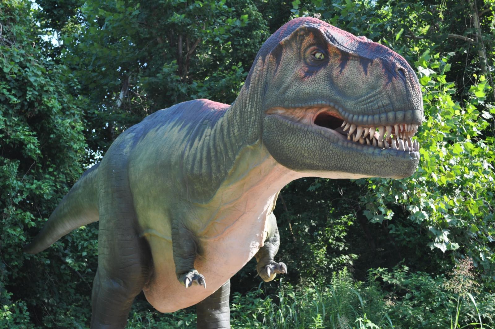 Dinosaurs, Minnesota Zoo, Apple Valley