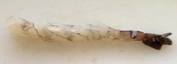 straight shrimp