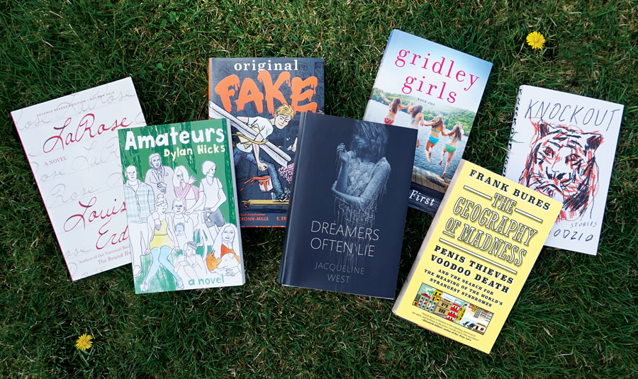 books by minnesota authors, summer reading 2016