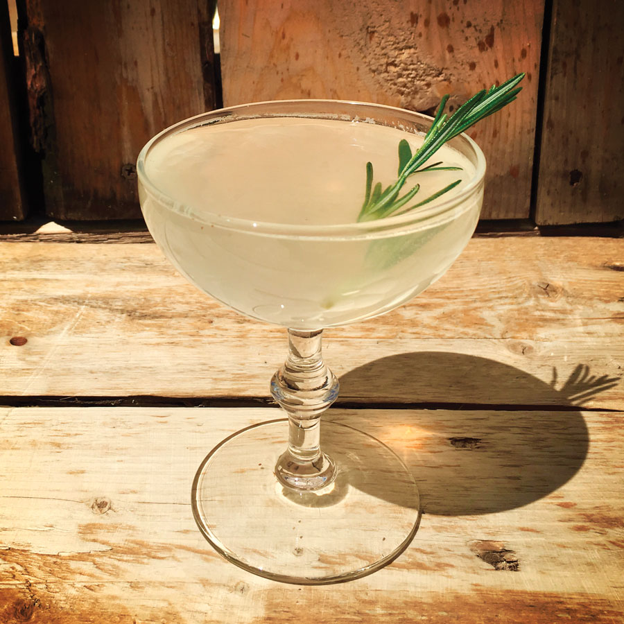 rosemary fitzgerald, drink of the month