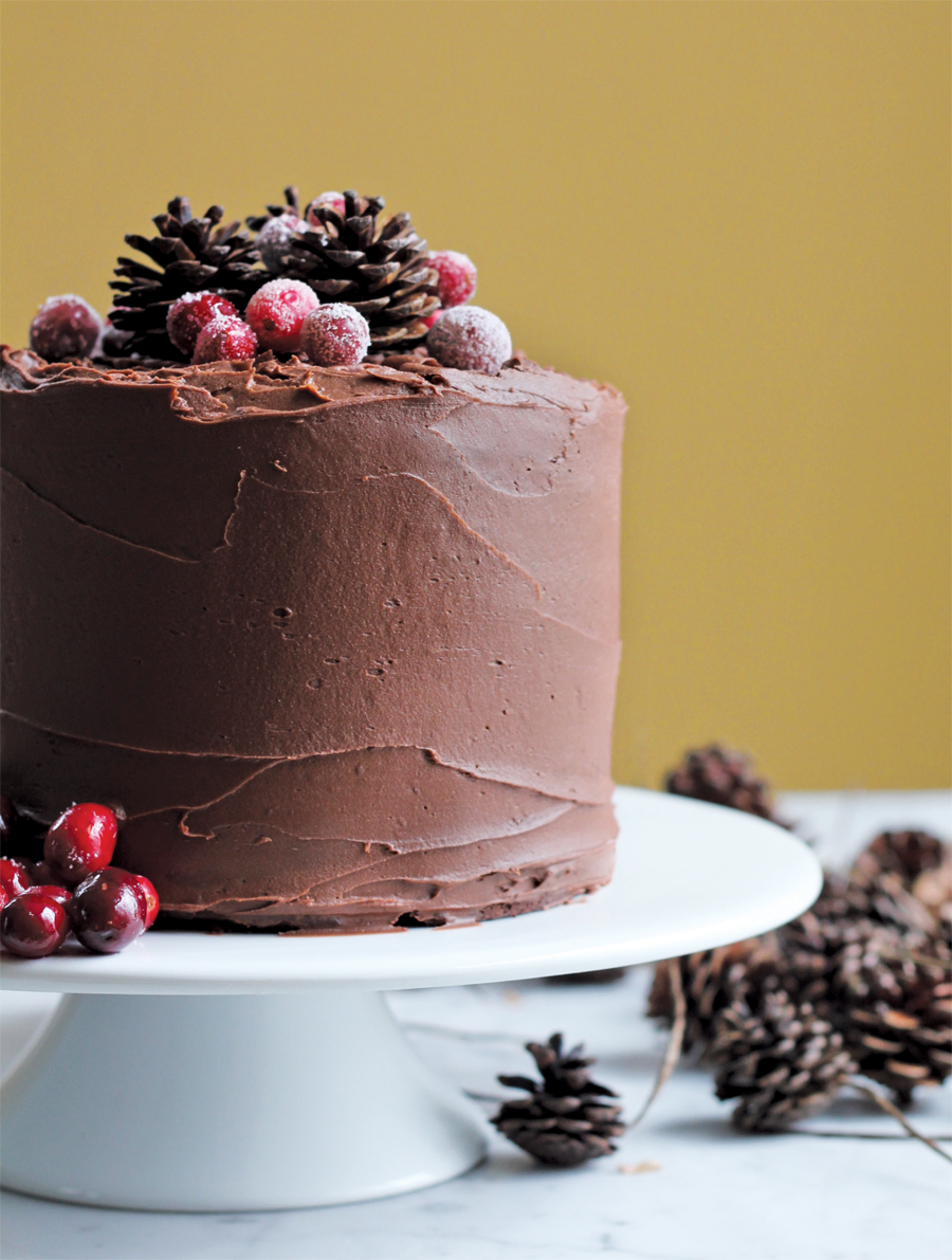 A piece of chocolate cake with a decorative pinecone on top.