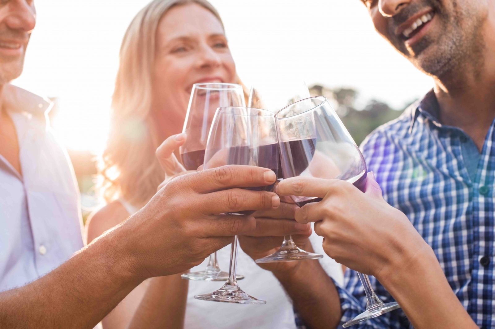 Courtesy Rido/Fotolia. Friends toasting with red wine at a winery.