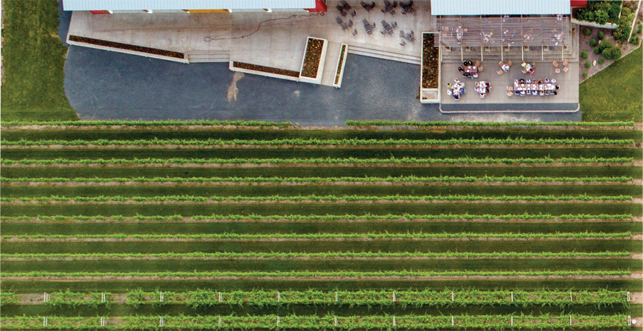 An aerial view of the vineyards at Four Daughters Vineyard & Winery.