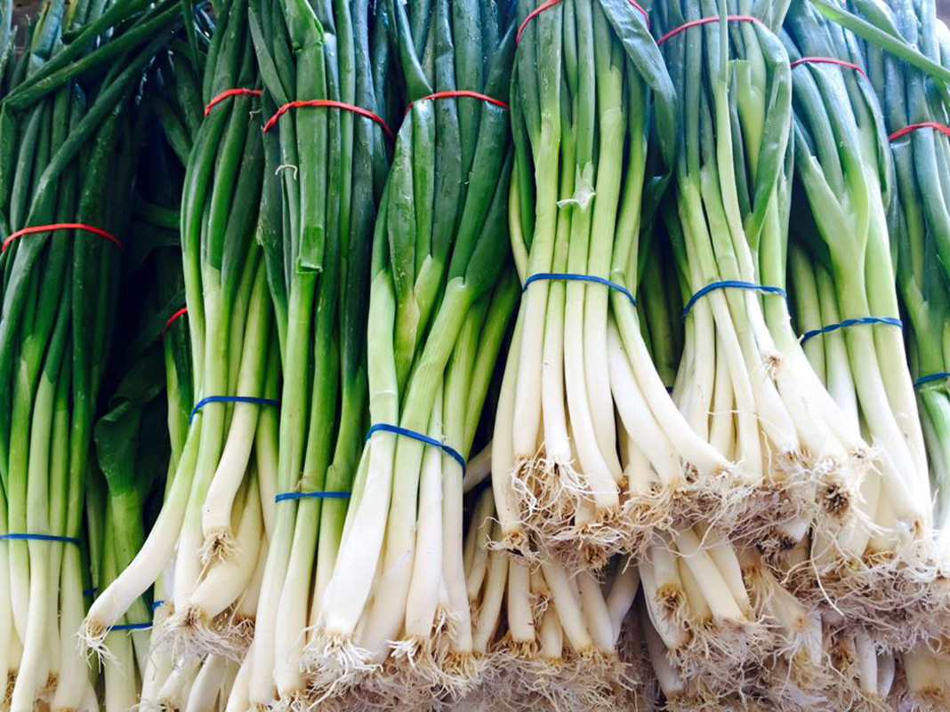 Photo of Green Onions at the Minneapolis Farmers Market