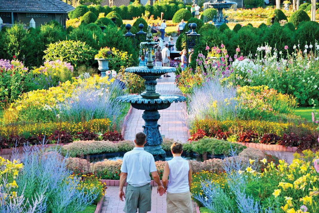 Flower Garden Minnesota