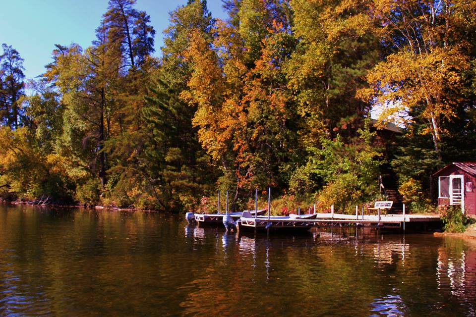 Grand Rapids Fall Colors at the Loon Resort
