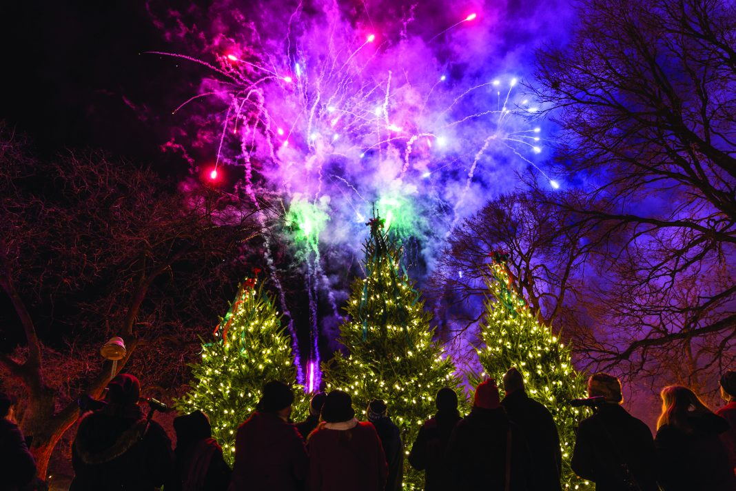 Holidazzle Festival in Loring Park, Minneapolis