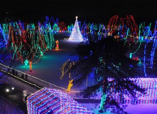 A park with impressive holiday lights display