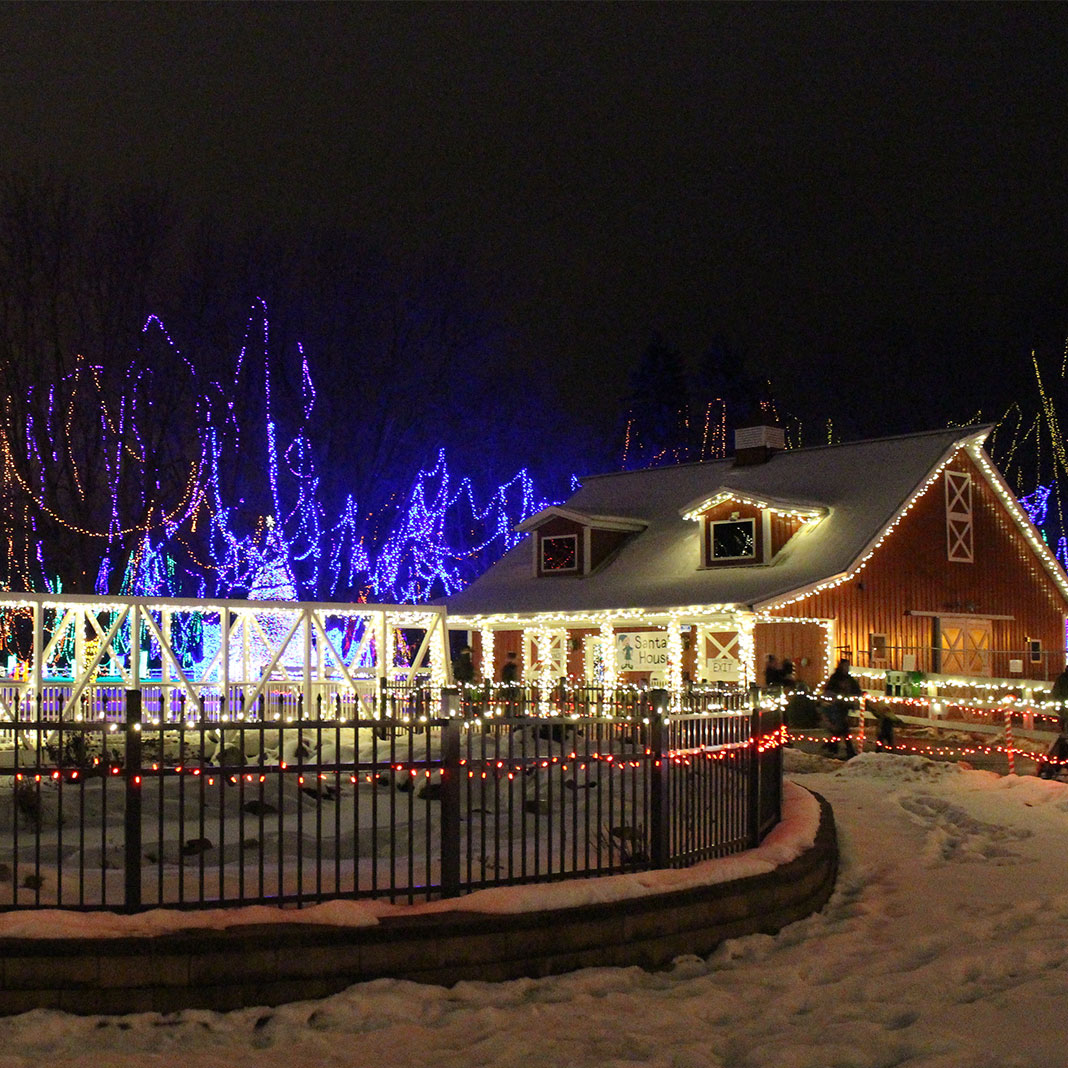 A house lit with holiday lights.