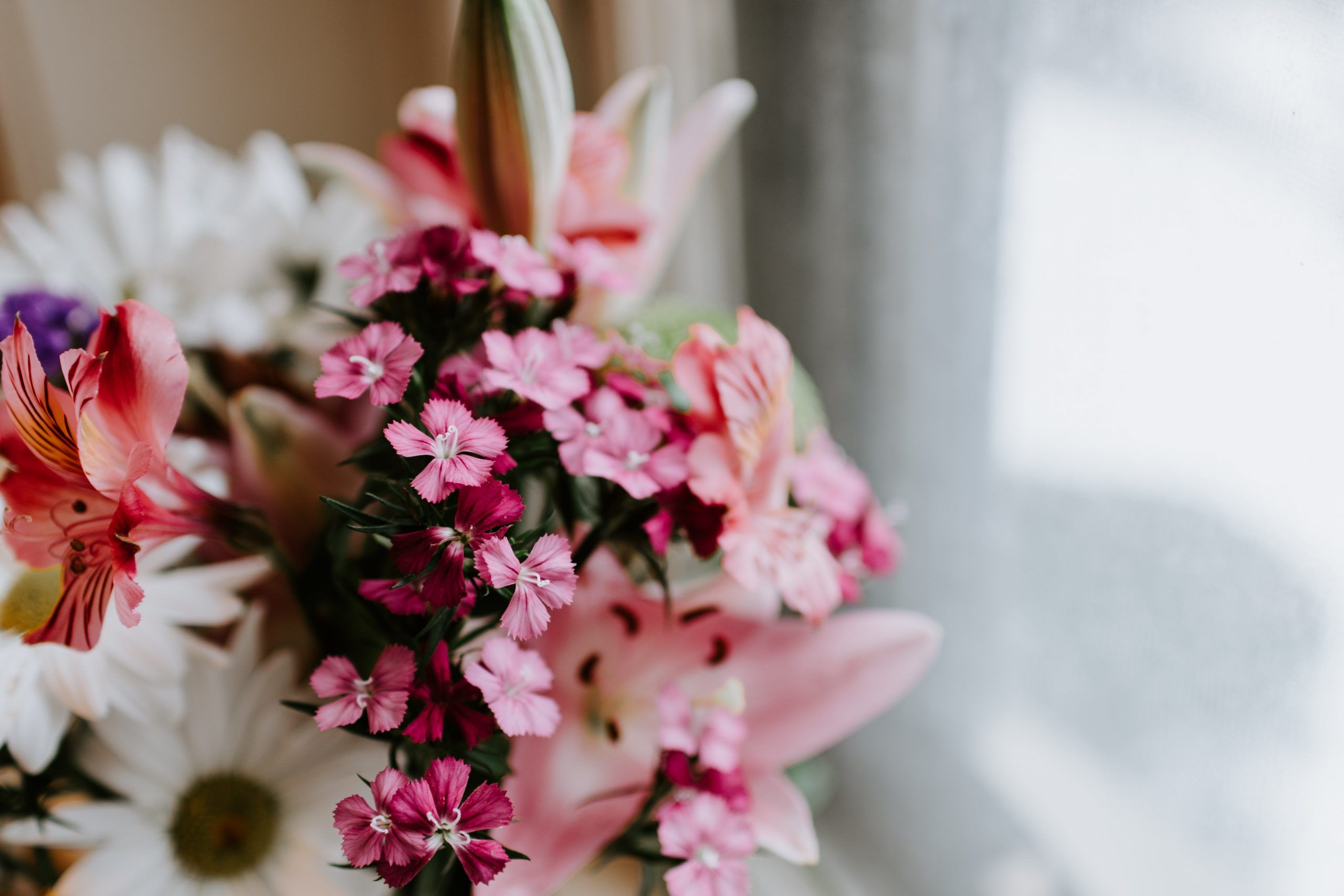 a bouquet of pretty pink and white flowers.