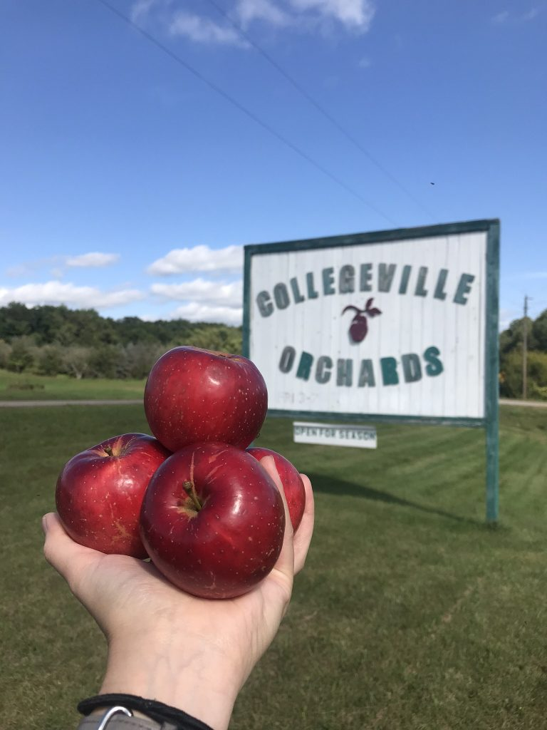 Person holding red apples next to Collegeville Orchards sign in St. Cloud