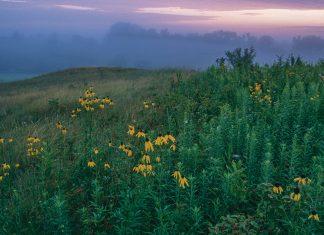 Lost Valley Prairie by Hastings