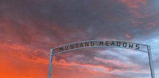 "The entrance to the Wolakota Buffalo Range property, sign reads ""Mustang Meadows"""