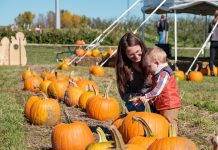 A woman and child picking out pumpkins at Country Blossom Farm in Alexandria