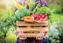 CSAs, which box up farm-sourced foods for delivery, saw a pandemic-induced bump