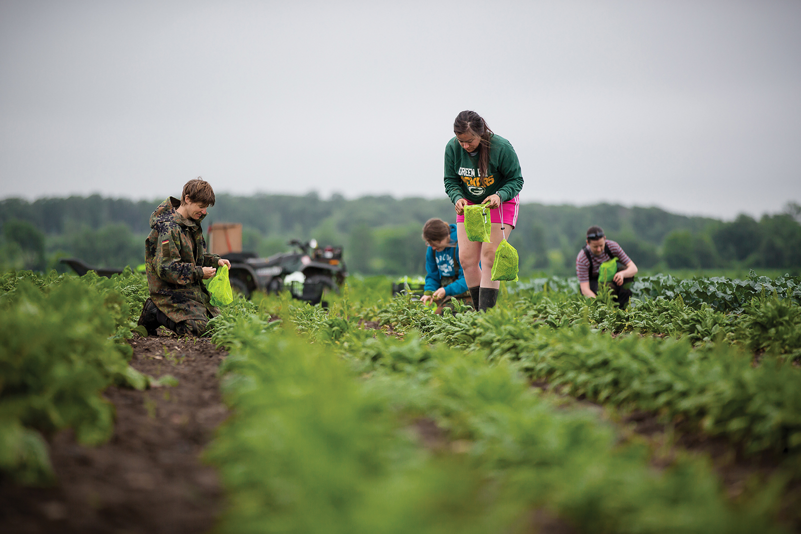 Threshing Table Farm in Wisconsin is a Land Stewardship Project member