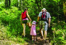 A family of three walking on a forest trail