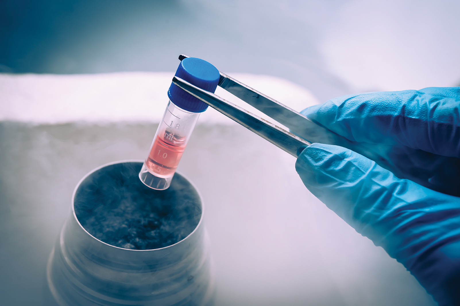 A sample enters cryopreservation